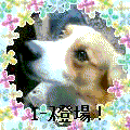20040916-1.png