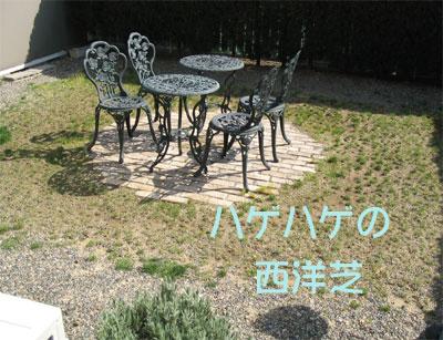 20050416-1.jpg