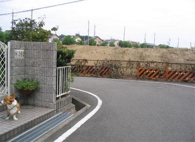20050825-1.jpg